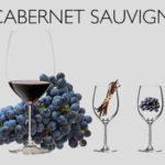 Cập nhật những dòng rượu vang nổi tiếng trên thế giới tại Rượu vang Minh Phương