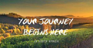 Đôi nét về rượu vang Nam Phi nhập khẩu