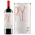 Vang Chile nhập khẩu Tabali Payen cao cấp