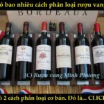 Tìm hiểu những điều chưa biết về rượu vang cùng rượu vang Minh Phương (P2)